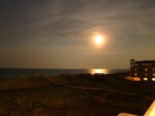 Maanverlichte nacht maanlicht