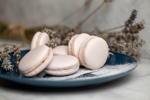 Macarons op blauw bord met poedersuiker