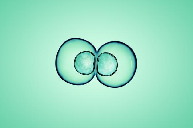 Macro dichte omhooggaand van zeepbels kijkt als wetenschappelijk beeld van het proces van de cellenafdeling.