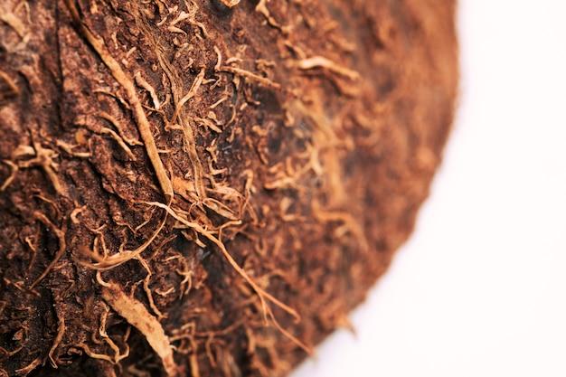 Macro kokosnoot textuur