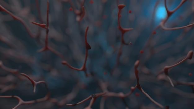 Macro-opname van het bloedsomloopstelsel van organisch weefsel