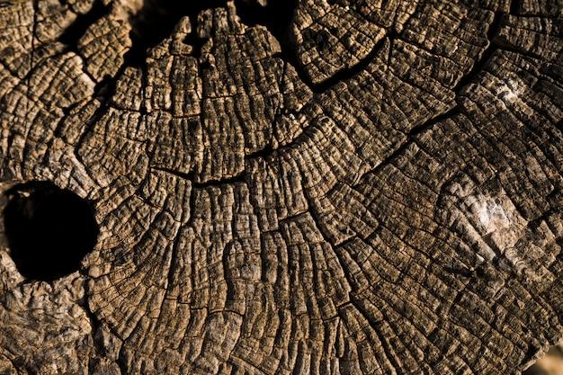 Macro van bruine houten textuur wordt geschoten die