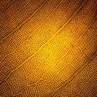 Macro van een oranje blad