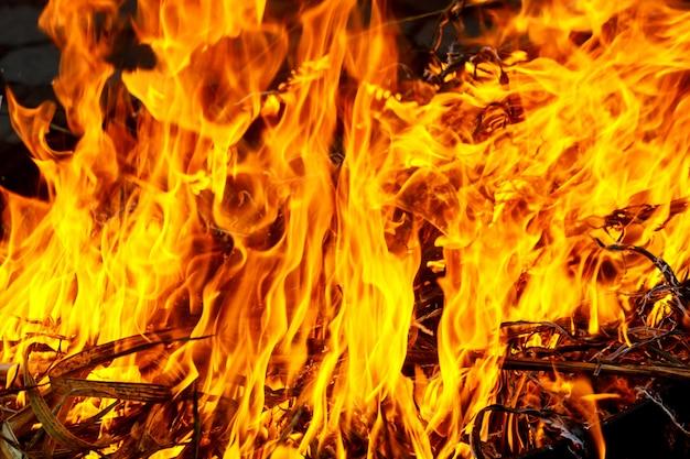 Macroschot van vuur, witte rook, hete, gloeiende steenkool en brand. brandende takken en hout.