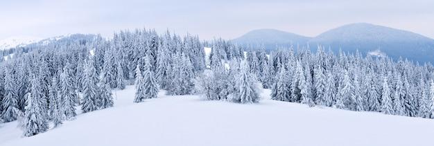 Magisch panorama van een prachtige heuvel in de bergen