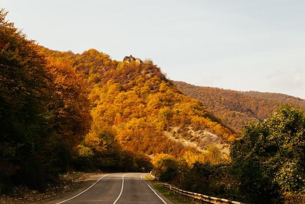 Magische betoverende natuur, de berghellingen zijn bedekt met gele en groene bomen, in de stralen van de zon