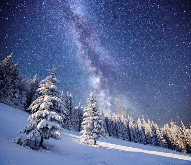 Magische boom in sterrenhemel winternacht
