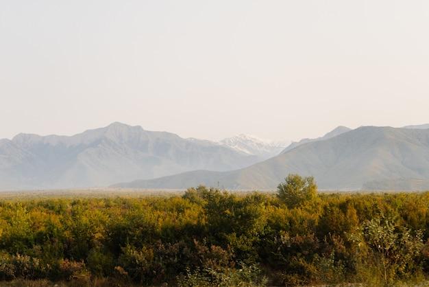 Magische inspirerende natuur, majestueuze bergen en hellingen, eindeloze groene weiden en bossen