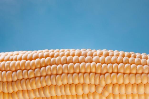 Maïs gekookt zoet, stoom rond de maïskolf op een hemelse achtergrond, een goed concept voor een restaurant.