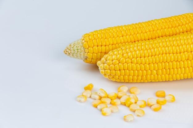 Maïs in de peul geïsoleerd met maïskorrels van maïsveld op witte muur.