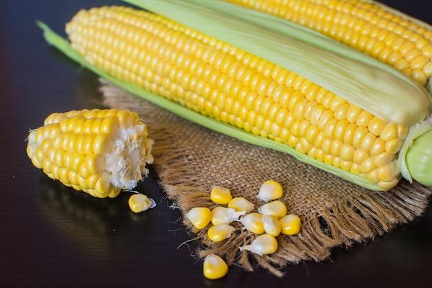 Maïs. oren van rijpe suikermaïs in bladeren
