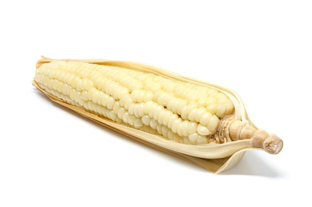 Maïs witte achtergrond