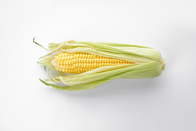 Maïskolf geïsoleerd op wit