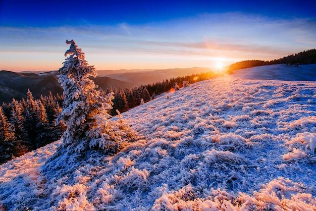 Majestueuze zonsondergang in de winter