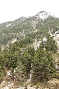 Malam jabba en kalam swat scenery landscape