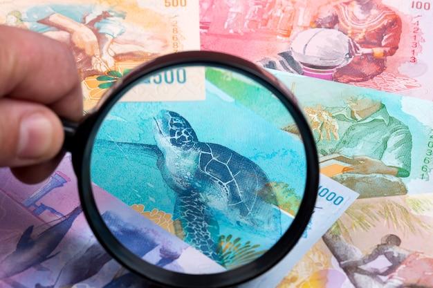 Maldivisch geld in een vergrootglas een bedrijfsachtergrond