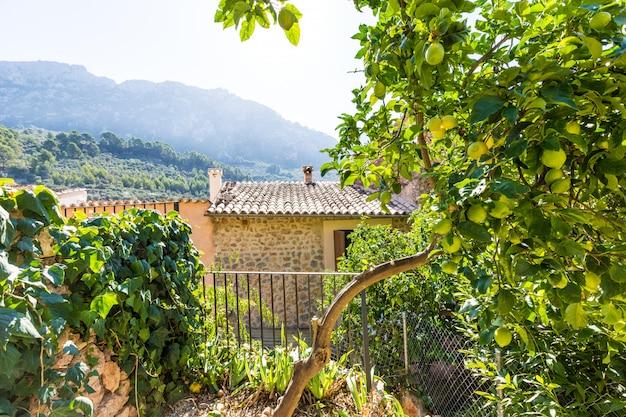 Mallorca balearen huis patio in de balearen