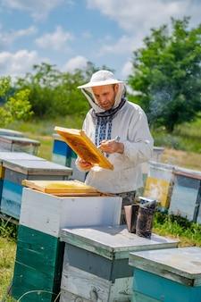 Man aan het werk in bijenstal. beschermende kleding. bijenteelt. bijenteelt concept.