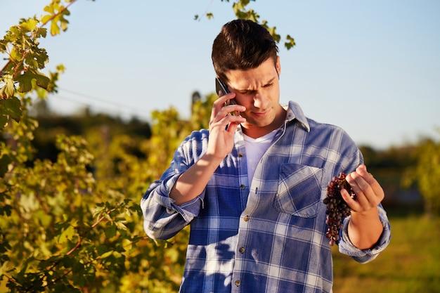 Man aan het werk in een wijngaard