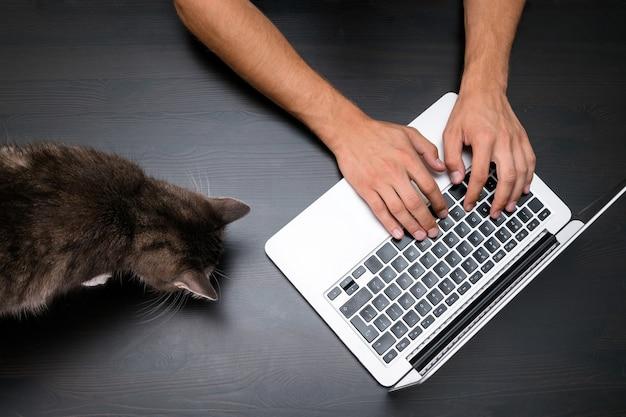 Man aan het werk in huisdiervriendelijke kantoor met kat met behulp van een laptopcomputer.