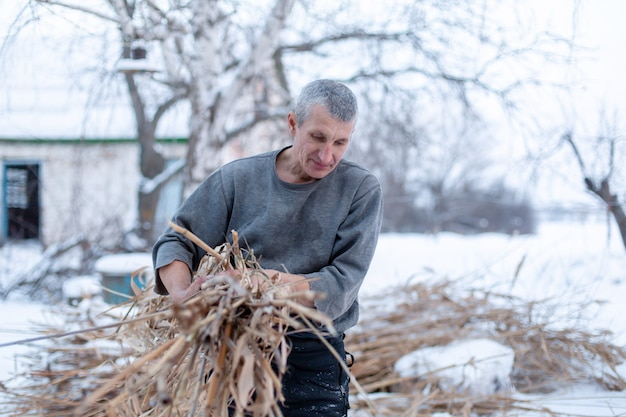 Man beschermt een droog rietveld, verwarmt planten in de winter