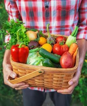 Man boer heeft een oogst van groenten in zijn handen