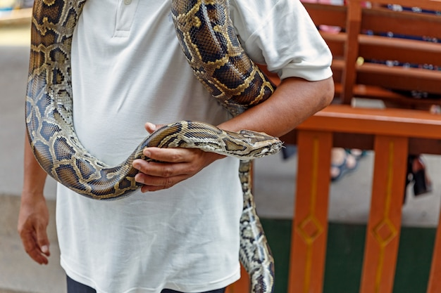 Man die een slang hanteert voor een show