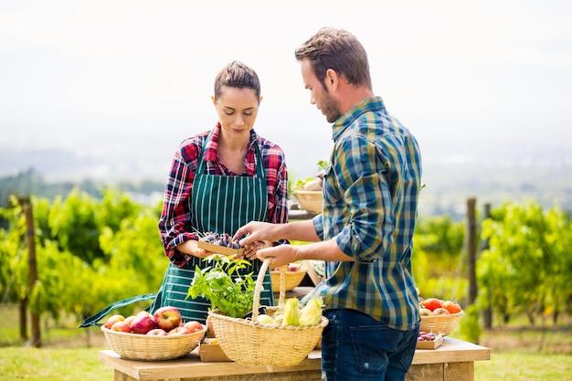 Man die organische groenten kopen van vrouw bij landbouwbedrijf