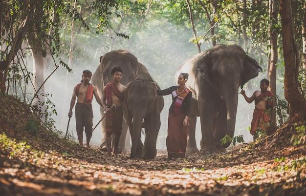 Man en kinderen gaan in de jungle met de olifant, levensstijl momenten uit noord-thailand
