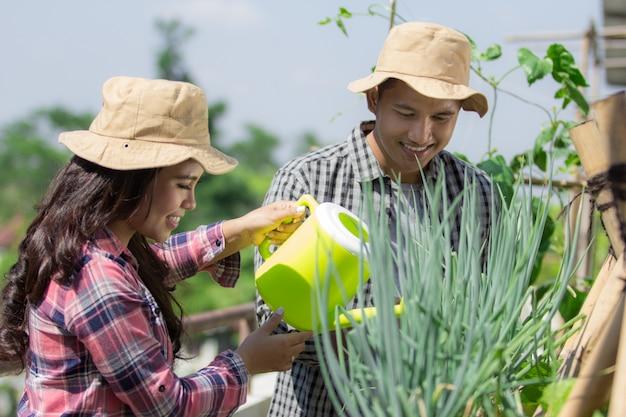 Man en vrouw die werkt in de farm