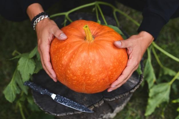 Man handen houden pompoen voor het snijden voor halloween, bereidt jack o'lantern voor. decoratie voor feest, bovenaanzicht, close-up, weergave van bovenaf, kopieer ruimte
