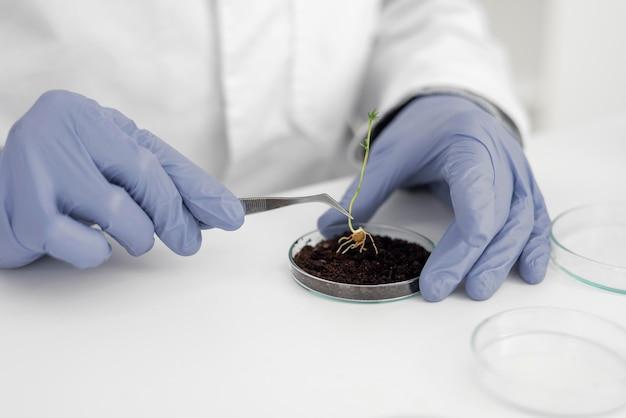 Man in lab doet experimenten close-up op spruit