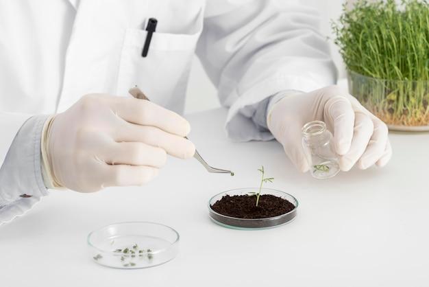 Man in lab experimenten op spruit close-up
