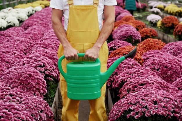 Man in tuinkleding met gieter tussen prachtige roze bloemen.