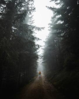 Man loopt door de mistige bossen in de dolomieten