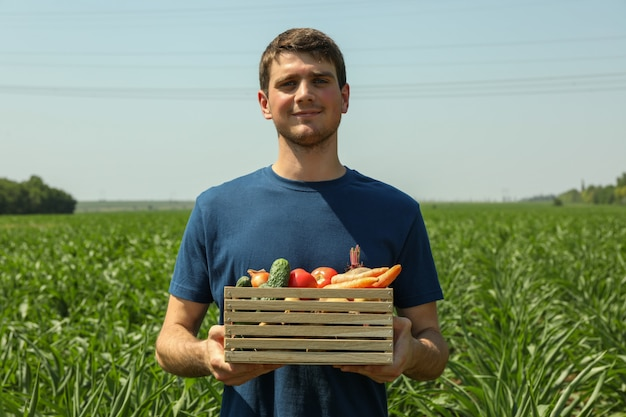 Man met houten kist met groenten in maïsveld
