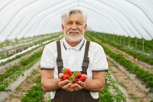 Man met oogst van aardbeien in handen