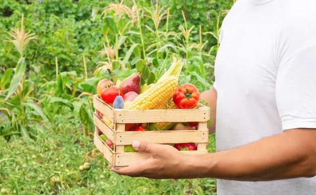 Man met verse biologische groenten en fruit in houten kist. schoon eten concept