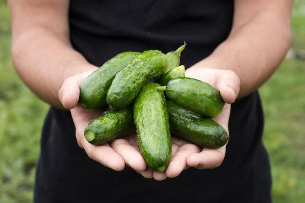 Man met verse komkommers