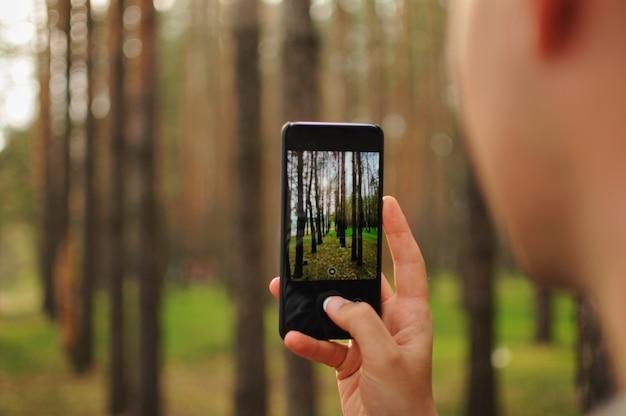 Man neemt een foto van pijnbomen in het bos met zijn smartphone. amateur fotograaf