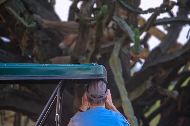 Man praten foto van boom en cactussen
