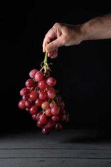 Man's hand houdt een bos van rijpe rode druiven op zwart