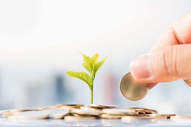 Man's hand zet gouden munten op stapel munten met groeiende plant en stadsgezicht achtergronden.