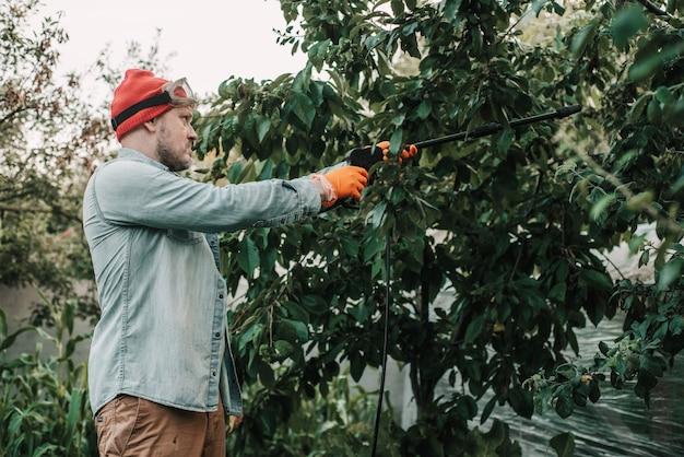 Man sproeit bladluizen aangetaste boom met insectendodende zeep, landarbeider sproeit giftige pesticiden of insecticiden op fruitteeltplantage