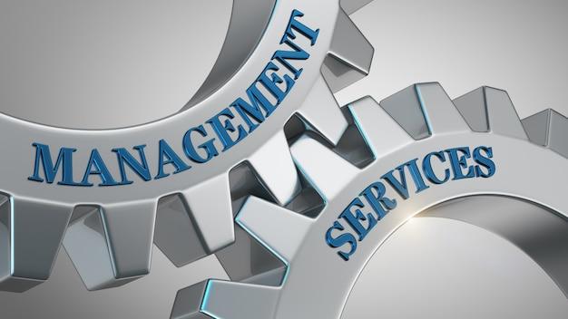 Management services achtergrond