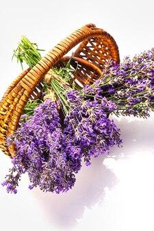 Mand met lavendel bloemen plant boeket geïsoleerd op witte achtergrond