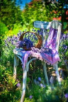 Mand met lavendelboeket op uitstekende stoel, op de achtergrond van het lavendelgebied