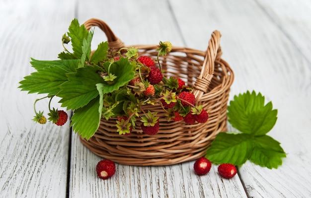 Mand met wilde aardbeien