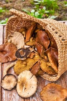 Mand vol met grote champignons op houten tafel buiten