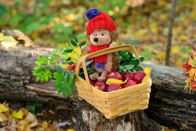 Mandje met egelspeelgoed en appels